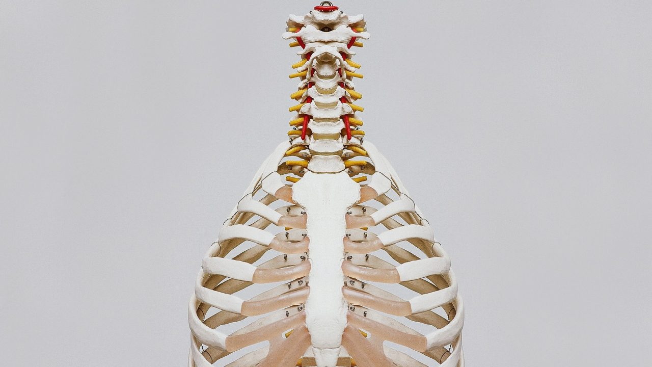 brain spine foundation spinal strokes